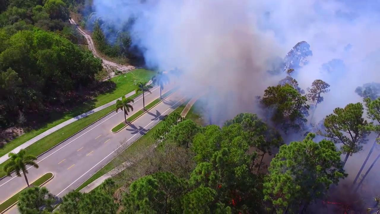 Massive brush fire snarls traffic in palm beach gardens wpec for Fire in palm beach gardens today