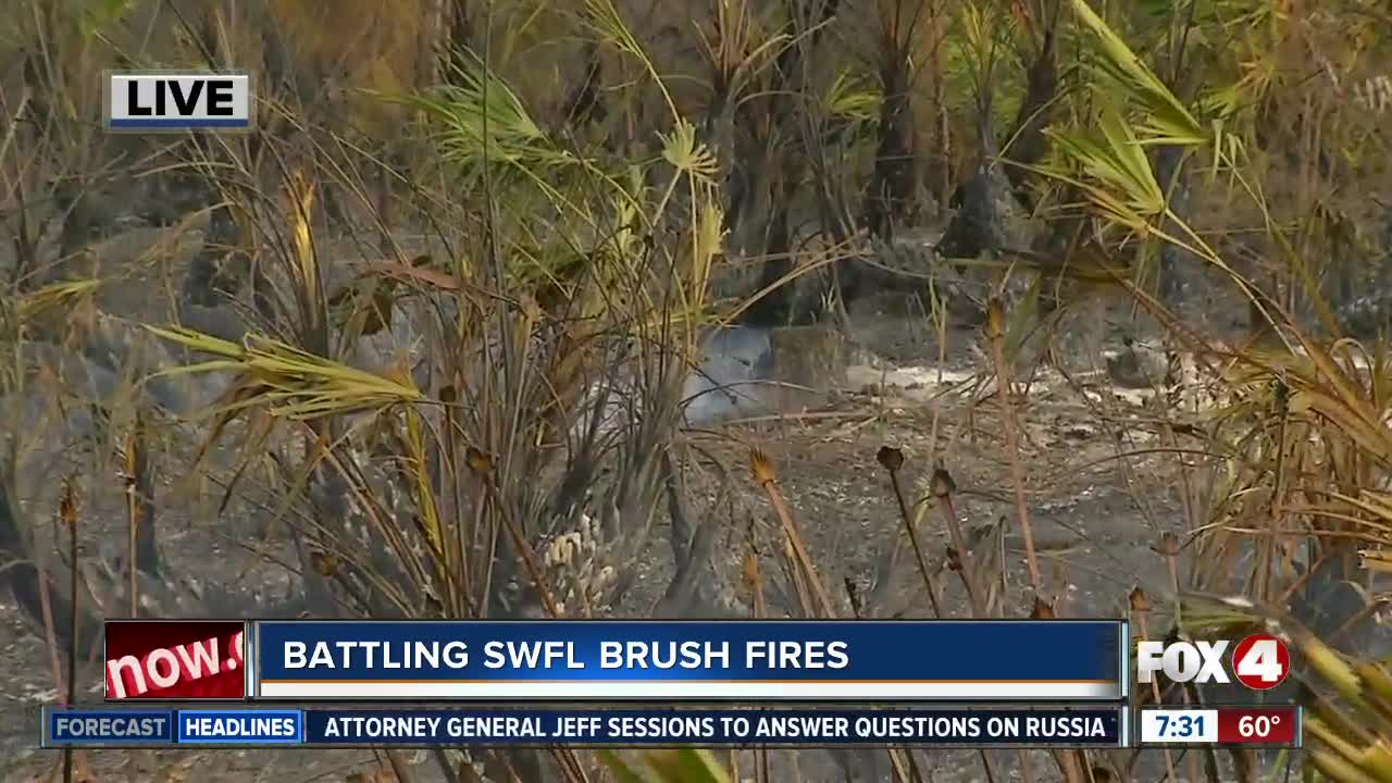 Fire crews closely monitoring brush fire hot spots in Lee County