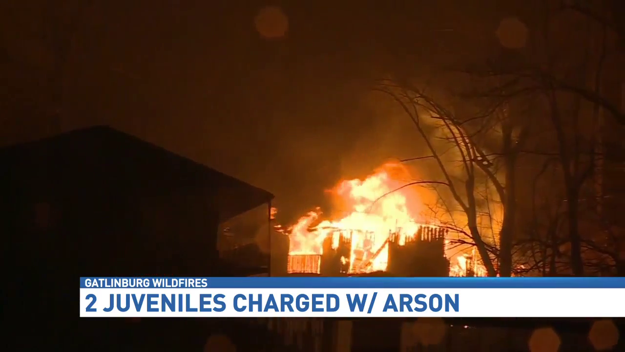 Arson and Juveniles Essay